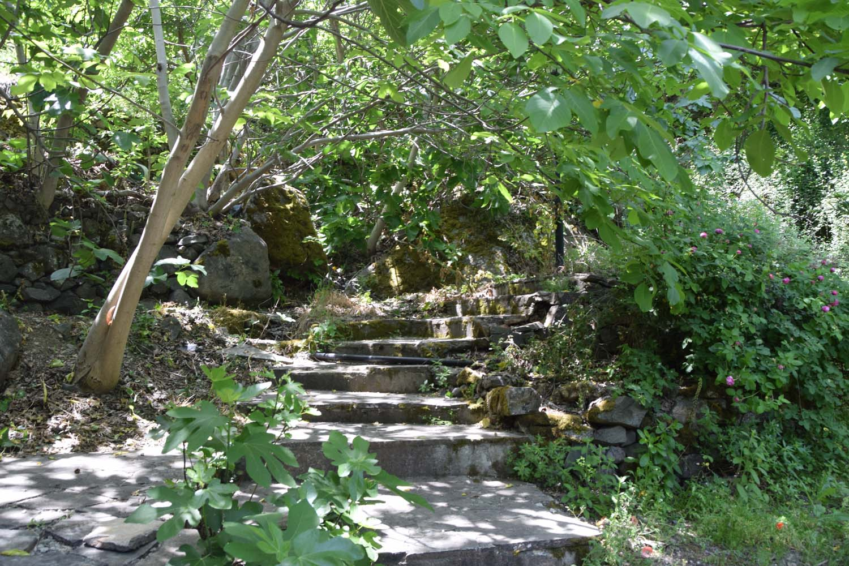 natural_trail_1